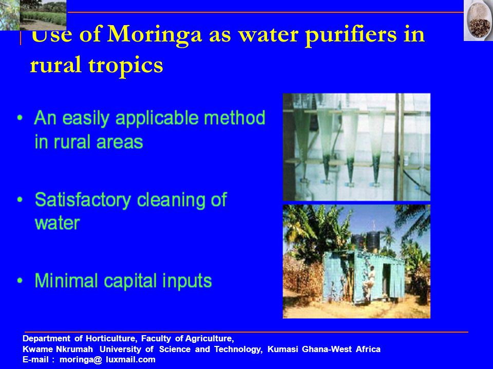 Use of Moringa as water purifiers in rural tropics Department of Horticulture, Faculty of Agriculture, Kwame Nkrumah University of Science and Technol