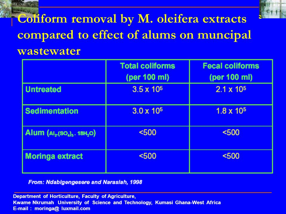 Coliform removal by M. oleifera extracts compared to effect of alums on muncipal wastewater Department of Horticulture, Faculty of Agriculture, Kwame