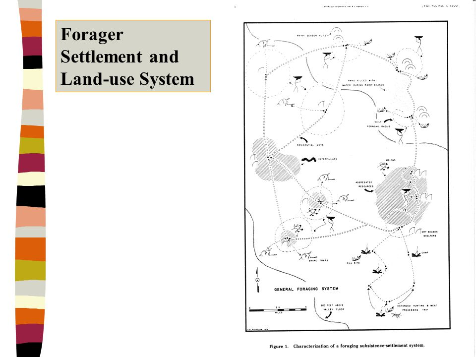Copyright © Allyn & Bacon 2002 Forager Settlement and Land-use System