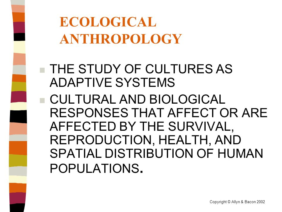 Copyright © Allyn & Bacon 2002 ECOLOGICAL ANTHROPOLOGY n THE STUDY OF CULTURES AS ADAPTIVE SYSTEMS n CULTURAL AND BIOLOGICAL RESPONSES THAT AFFECT OR ARE AFFECTED BY THE SURVIVAL, REPRODUCTION, HEALTH, AND SPATIAL DISTRIBUTION OF HUMAN POPULATIONS.