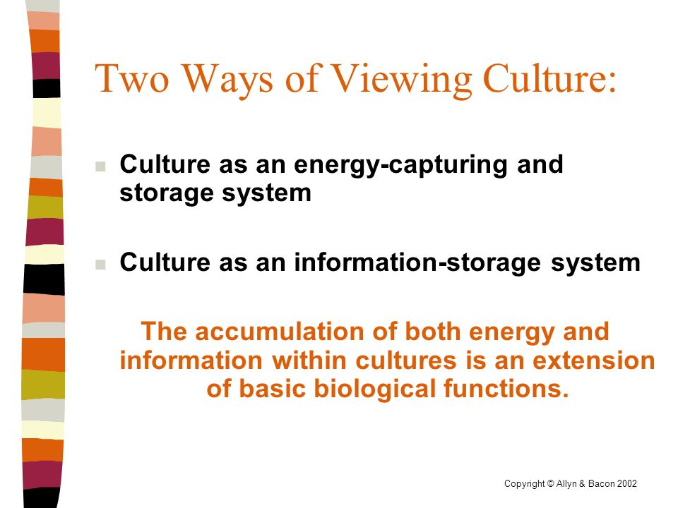 Copyright © Allyn & Bacon 2002 Two Ways of Viewing Culture: n Culture as an energy-capturing and storage system n Culture as an information-storage system The accumulation of both energy and information within cultures is an extension of basic biological functions.