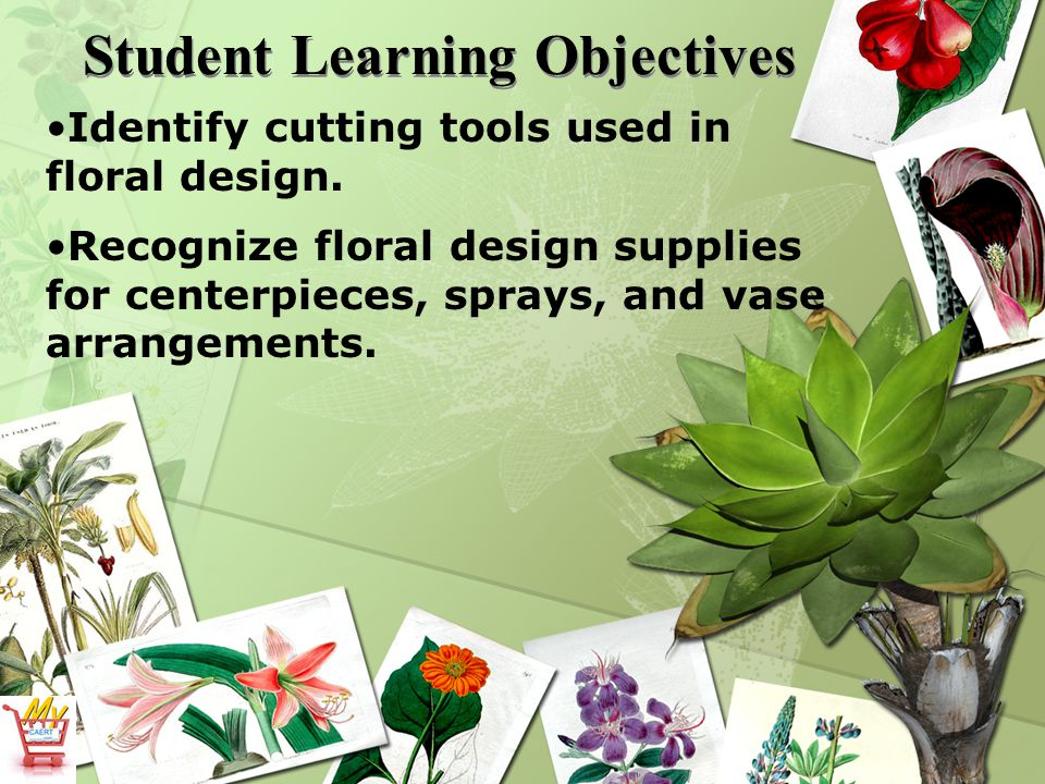 Student Learning Objectives Identify cutting tools used in floral design.