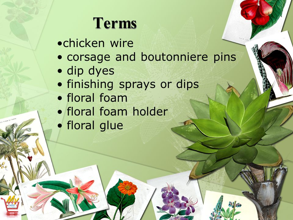 Terms chicken wire corsage and boutonniere pins dip dyes finishing sprays or dips floral foam floral foam holder floral glue