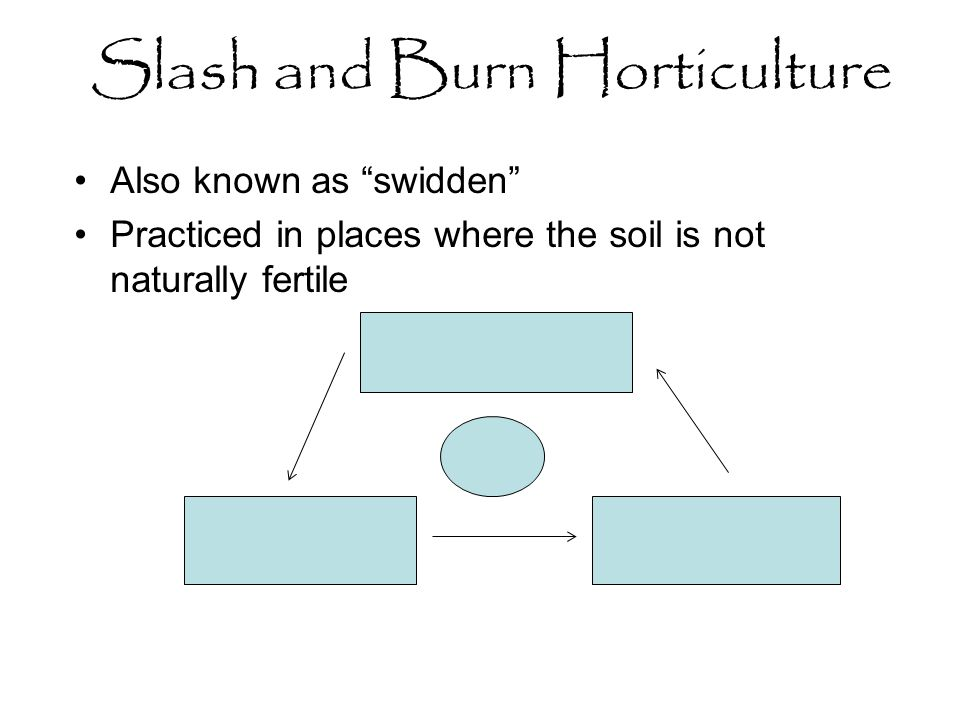 Slash and Burn Horticulture Also known as swidden Practiced in places where the soil is not naturally fertile