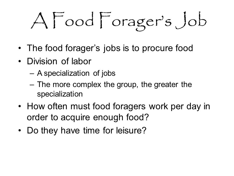 A Food Forager's Job The food forager's jobs is to procure food Division of labor –A specialization of jobs –The more complex the group, the greater the specialization How often must food foragers work per day in order to acquire enough food.