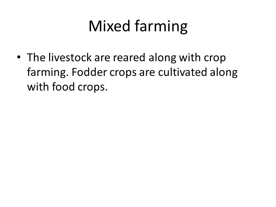 The livestock are reared along with crop farming. Fodder crops are cultivated along with food crops.