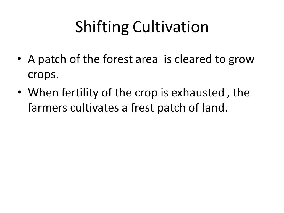 Shifting Cultivation A patch of the forest area is cleared to grow crops.