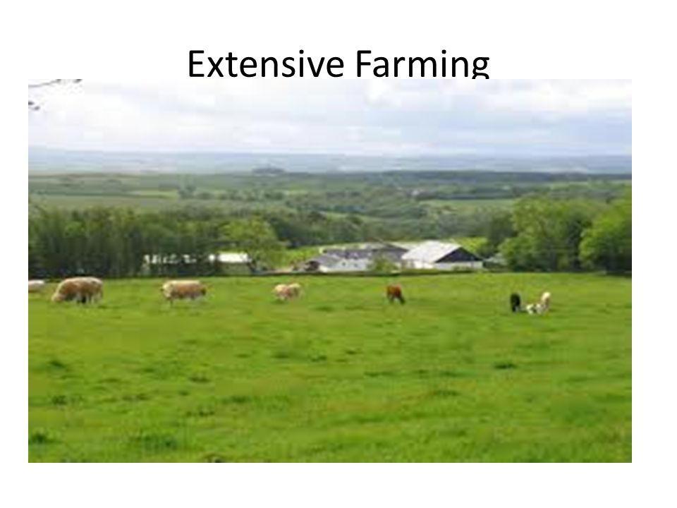 Extensive Farming