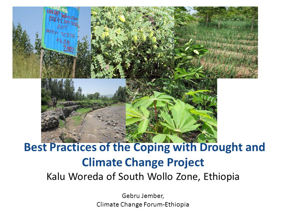 Background The UNDP/GEF initiated, Coping with Drought and Climate Change, is a model project under implementation in four African countries: Ethiopia, Kenya, Zimbabwe and Mozambique.