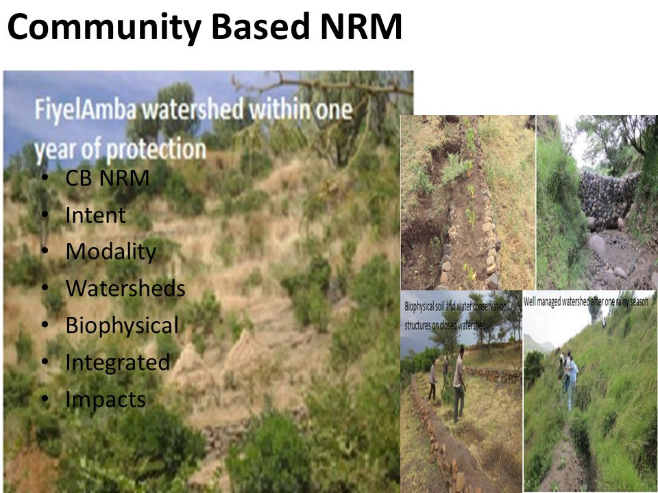 CB NRM Intent Modality Watersheds Biophysical Integrated Impacts Community Based NRM