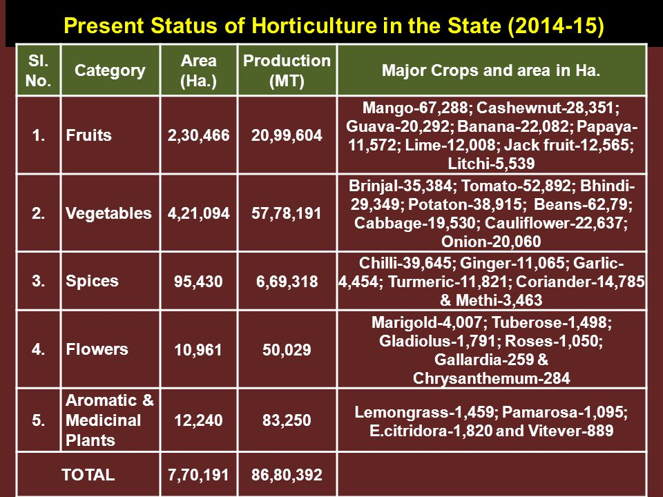 Growth of Horticulture Since 2004-05 Sl.