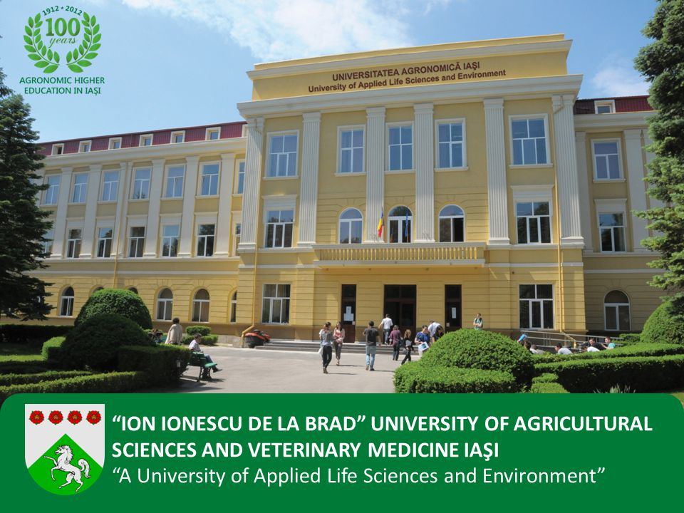 Students: 80,000 5 Public Universities 3 Private Universities Population: 350,000 IASI
