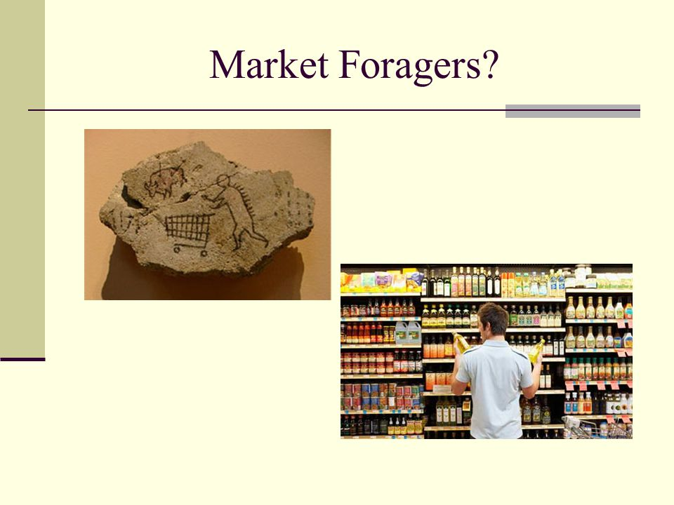 Market Foragers