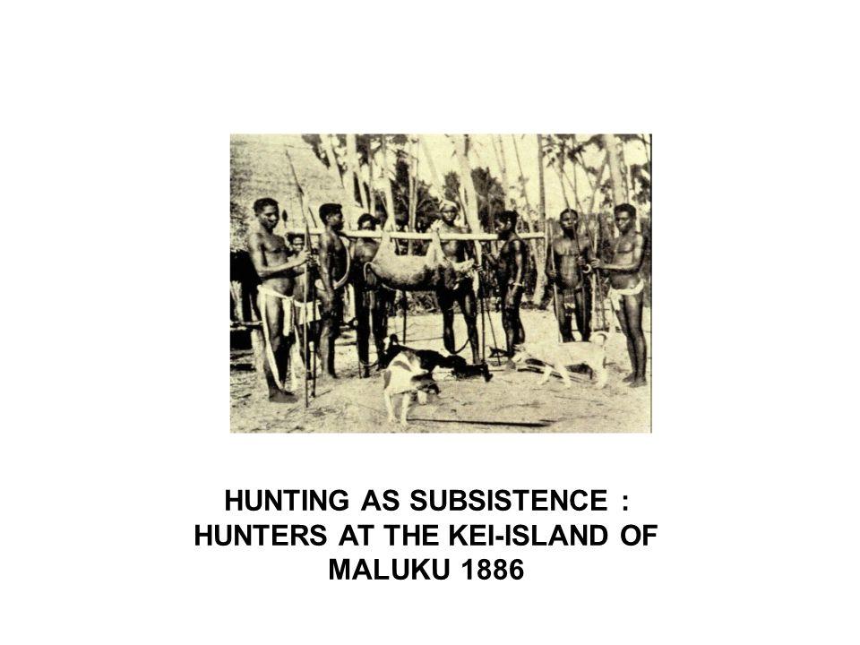 HUNTING AS SUBSISTENCE : HUNTERS AT THE KEI-ISLAND OF MALUKU 1886