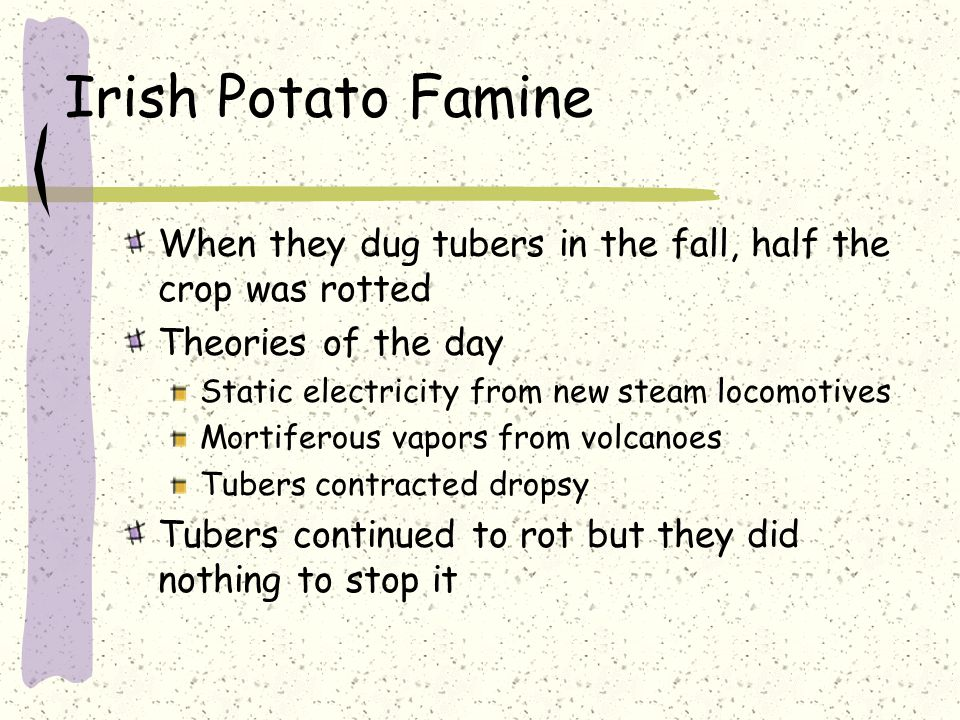 Irish Potato Famine When they dug tubers in the fall, half the crop was rotted Theories of the day Static electricity from new steam locomotives Mortiferous vapors from volcanoes Tubers contracted dropsy Tubers continued to rot but they did nothing to stop it