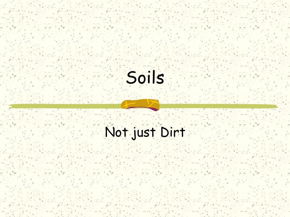 Soils Not just Dirt