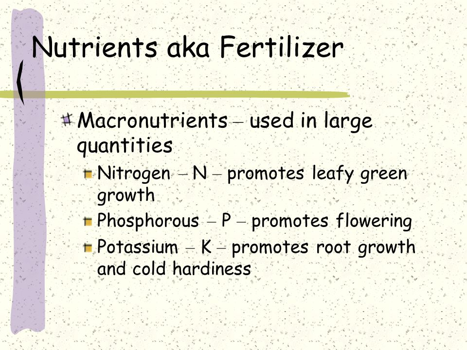Nutrients aka Fertilizer Macronutrients – used in large quantities Nitrogen – N – promotes leafy green growth Phosphorous – P – promotes flowering Pot