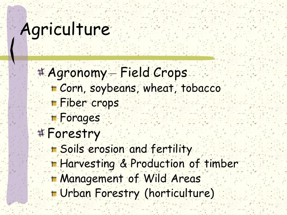 Agriculture Agronomy – Field Crops Corn, soybeans, wheat, tobacco Fiber crops Forages Forestry Soils erosion and fertility Harvesting & Production of