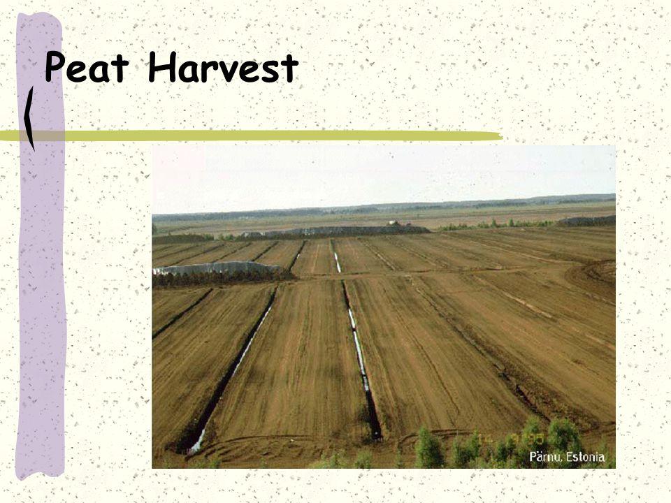 Peat Harvest