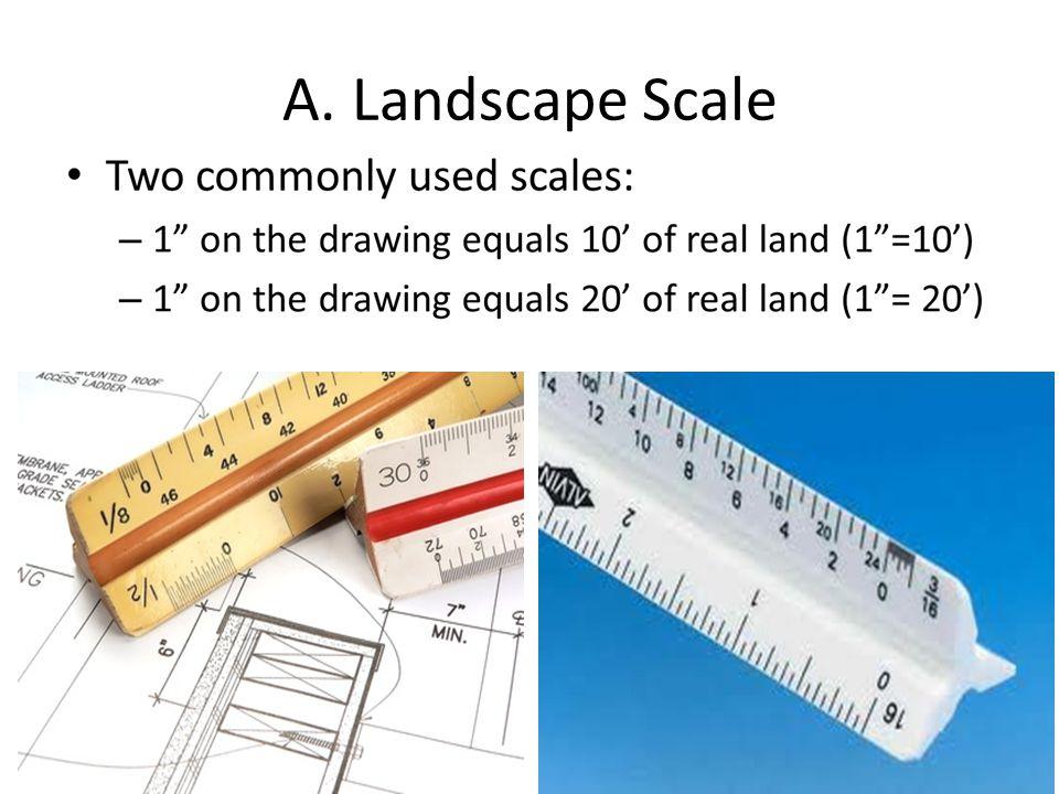 A. Landscape Scale