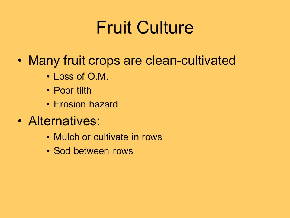 Fruit Culture Many fruit crops are clean-cultivated Loss of O.M.
