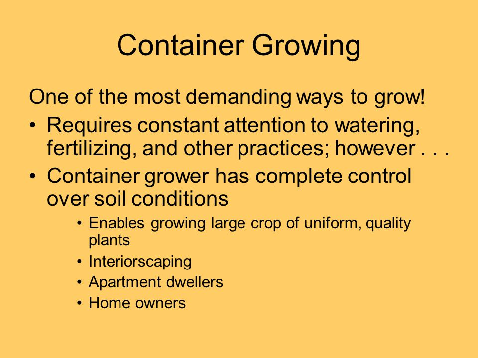 Container Growing One of the most demanding ways to grow! Requires constant attention to watering, fertilizing, and other practices; however... Contai