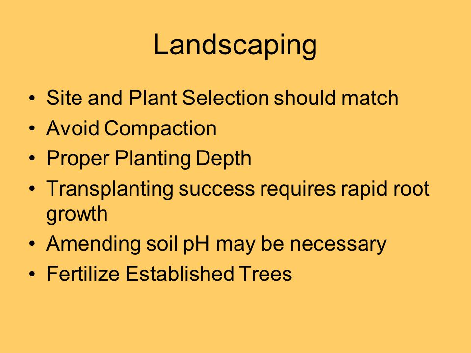 Landscaping Site and Plant Selection should match Avoid Compaction Proper Planting Depth Transplanting success requires rapid root growth Amending soil pH may be necessary Fertilize Established Trees