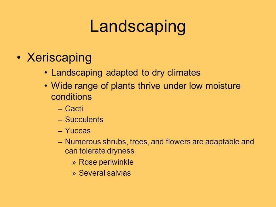 Landscaping Xeriscaping Landscaping adapted to dry climates Wide range of plants thrive under low moisture conditions –Cacti –Succulents –Yuccas –Numerous shrubs, trees, and flowers are adaptable and can tolerate dryness »Rose periwinkle »Several salvias