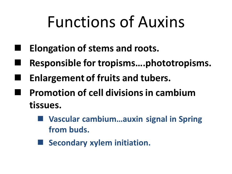 Functions of Auxins Elongation of stems and roots.
