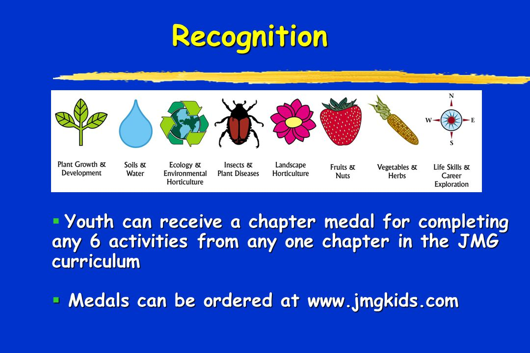 Recognition Youth can receive a chapter medal for completing any 6 activities from any one chapter in the JMG curriculum  Youth can receive a chapter medal for completing any 6 activities from any one chapter in the JMG curriculum  Medals can be ordered at www.jmgkids.com