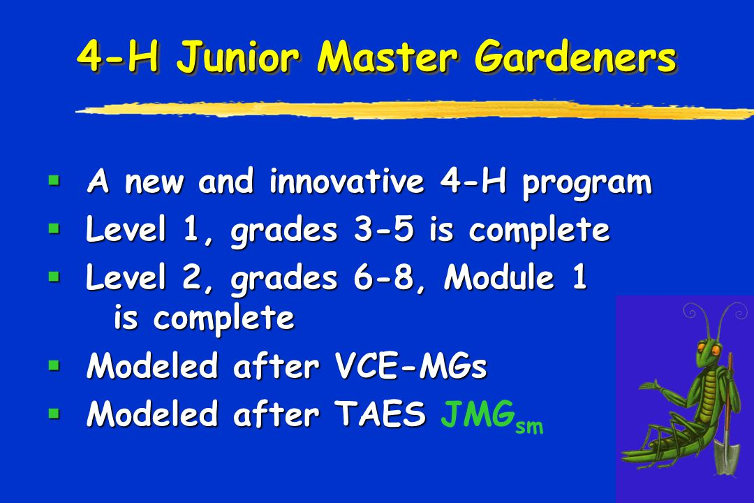 4-H Junior Master Gardeners  A new and innovative 4-H program  Level 1, grades 3-5 is complete  Level 2, grades 6-8, Module 1 is complete  Modeled after VCE-MGs  Modeled after TAES  Modeled after TAES JMG sm