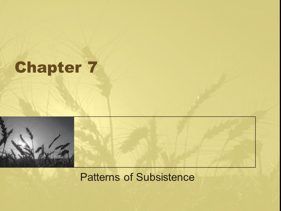 Chapter 7 Patterns of Subsistence