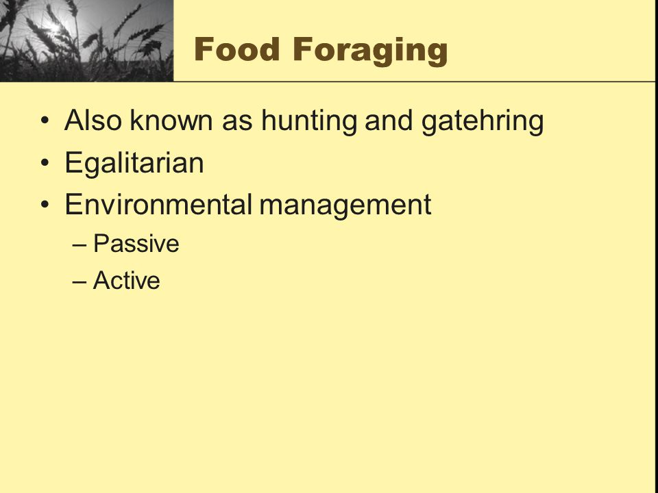 Food Foraging Also known as hunting and gatehring Egalitarian Environmental management –Passive –Active