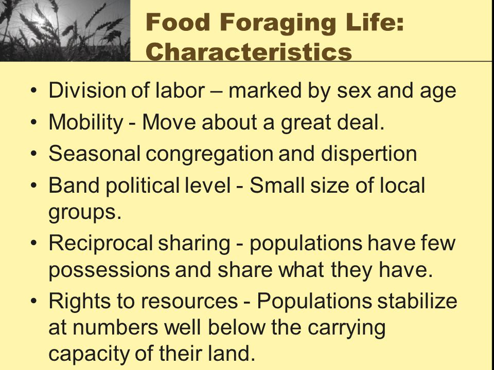 Food Foraging Life: Characteristics Division of labor – marked by sex and age Mobility - Move about a great deal.