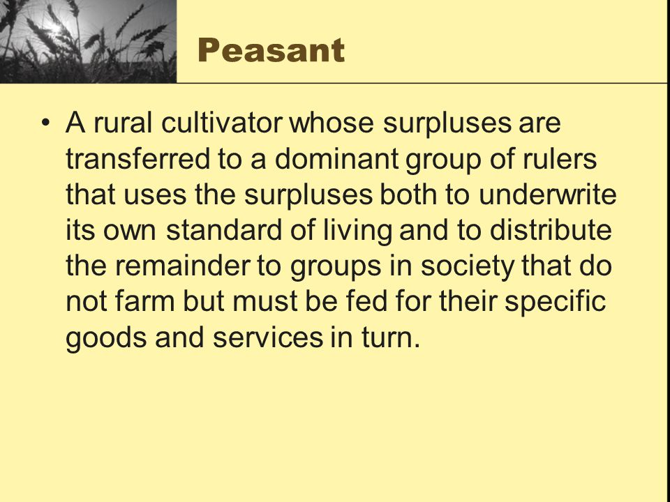 Peasant A rural cultivator whose surpluses are transferred to a dominant group of rulers that uses the surpluses both to underwrite its own standard of living and to distribute the remainder to groups in society that do not farm but must be fed for their specific goods and services in turn.