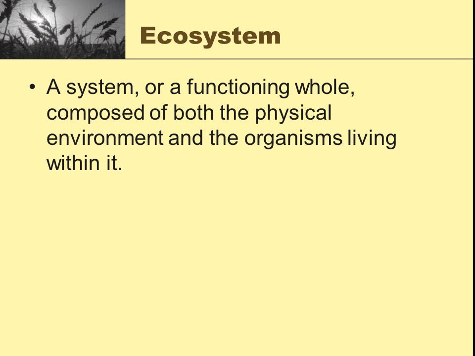 Ecosystem A system, or a functioning whole, composed of both the physical environment and the organisms living within it.
