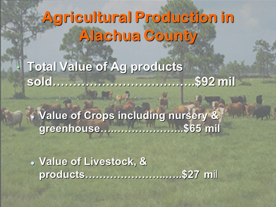 Agricultural Production in Alachua County Total Value of Ag products sold……………………………..$92 mil Total Value of Ag products sold……………………………..$92 mil Value of Crops including nursery & greenhouse….………………..$65 mil Value of Crops including nursery & greenhouse….………………..$65 mil Value of Livestock, & products…………………..…..$27 mil Value of Livestock, & products…………………..…..$27 mil