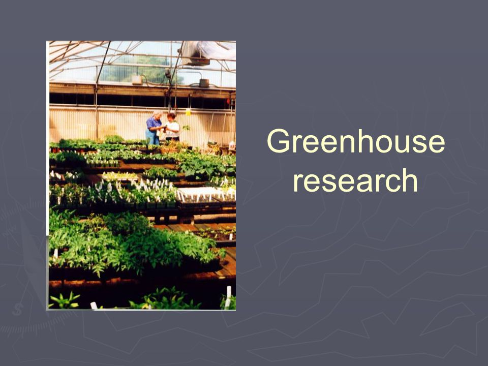 Greenhouse research