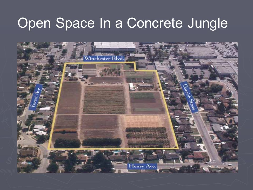 Open Space In a Concrete Jungle