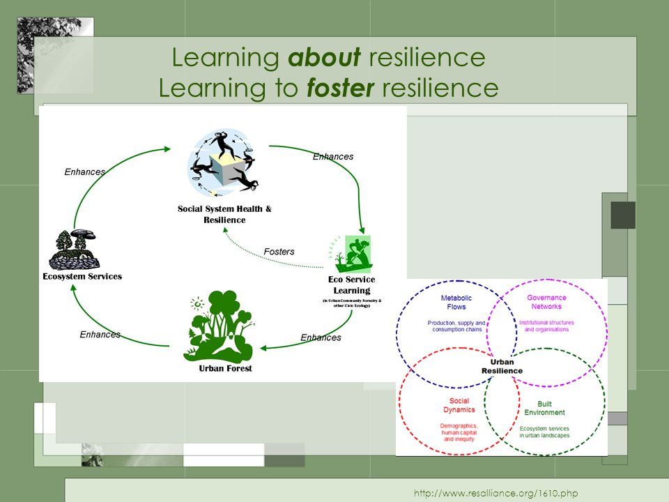 Learning about resilience Learning to foster resilience http://www.resalliance.org/1610.php