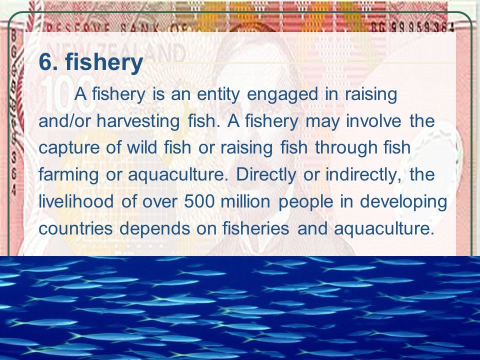 6. fishery A fishery is an entity engaged in raising and/or harvesting fish.