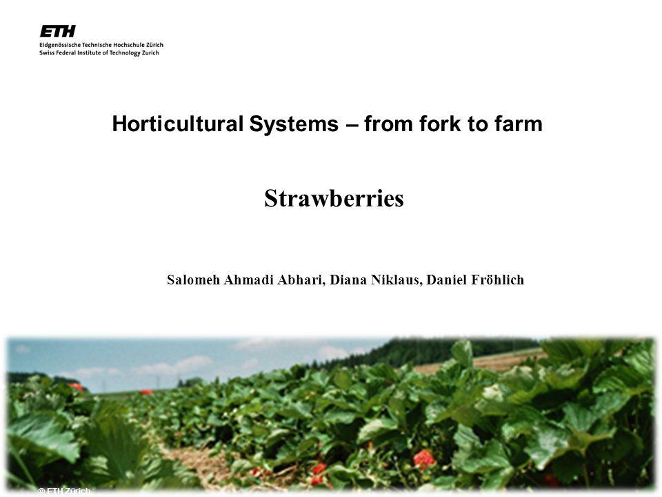 2.11.2007 Horticultural Systems – from fork to farm © ETH Zürich Strawberries Salomeh Ahmadi Abhari, Diana Niklaus, Daniel Fröhlich