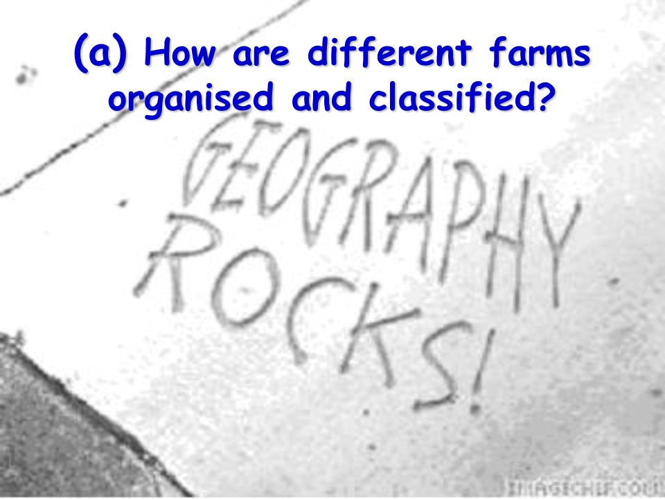 (a) How are different farms organised and classified?