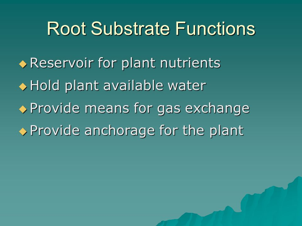 Root Substrate Functions  Reservoir for plant nutrients  Hold plant available water  Provide means for gas exchange  Provide anchorage for the plant