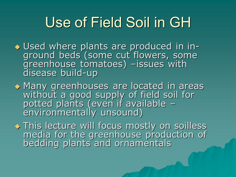Use of Field Soil in GH  Used where plants are produced in in- ground beds (some cut flowers, some greenhouse tomatoes) –issues with disease build-up  Many greenhouses are located in areas without a good supply of field soil for potted plants (even if available – environmentally unsound)  This lecture will focus mostly on soilless media for the greenhouse production of bedding plants and ornamentals
