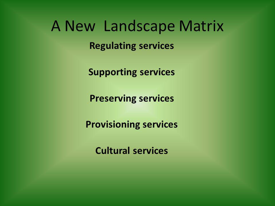 A New Landscape Matrix Regulating services Supporting services Preserving services Provisioning services Cultural services