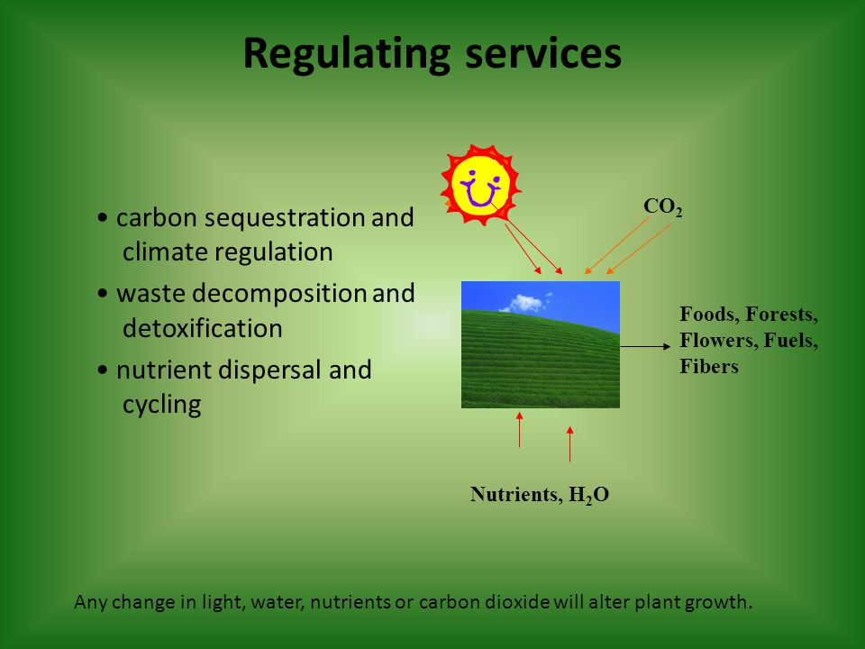 Regulating services carbon sequestration and climate regulation waste decomposition and detoxification nutrient dispersal and cycling CO 2 Foods, Forests, Flowers, Fuels, Fibers Nutrients, H 2 O Any change in light, water, nutrients or carbon dioxide will alter plant growth.