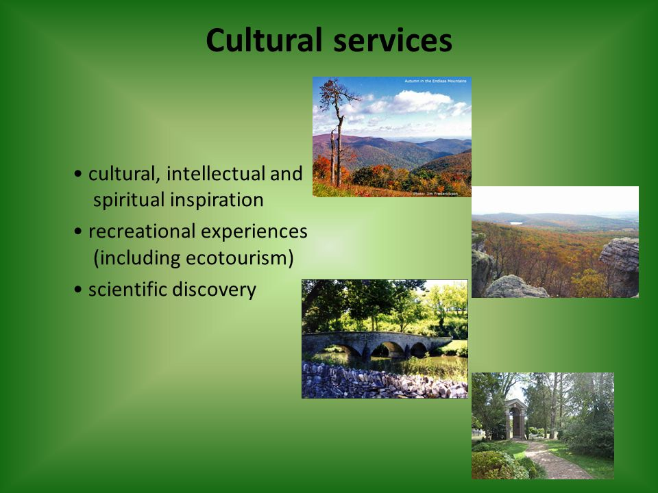 Cultural services cultural, intellectual and spiritual inspiration recreational experiences (including ecotourism) scientific discovery