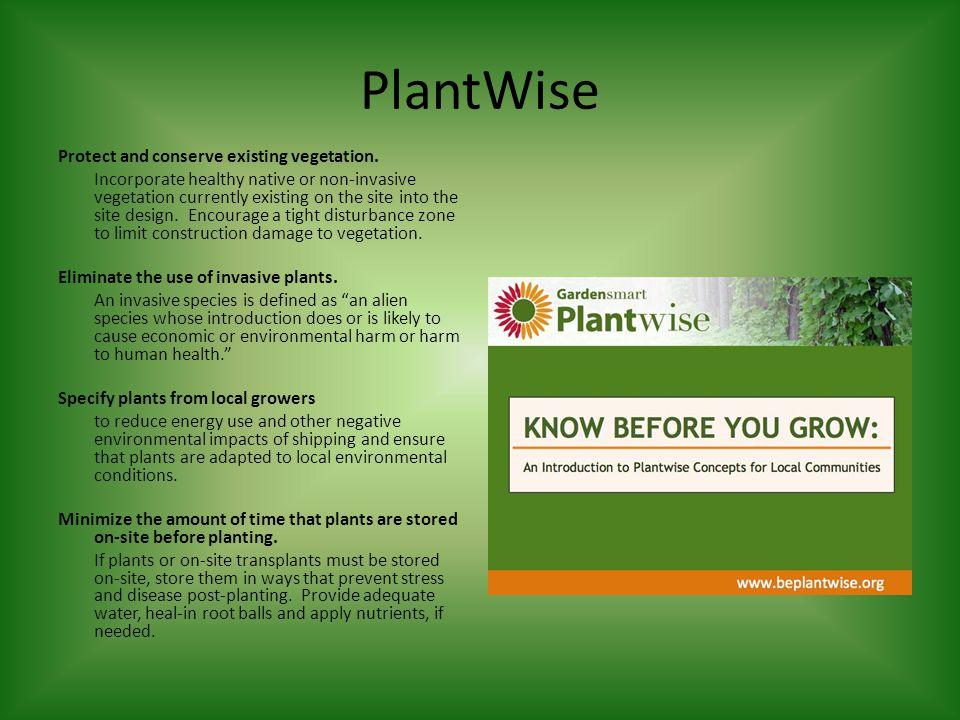 PlantWise Protect and conserve existing vegetation.