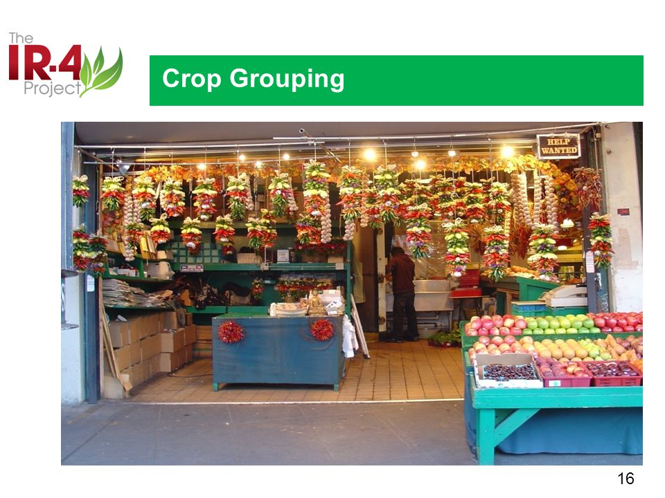 16 Crop Grouping OVERVIEW AND UPDATE